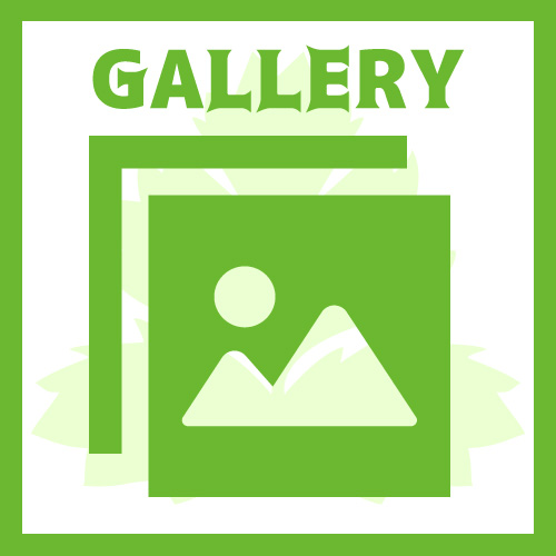 Banner gallery